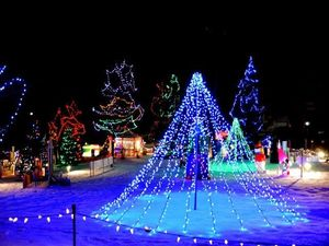 Christmas in the Park Orangeville