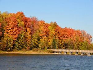 Fall Colours at Island Lake