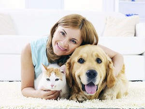 Tips on how to sell a Home in Dufferin County with Pets